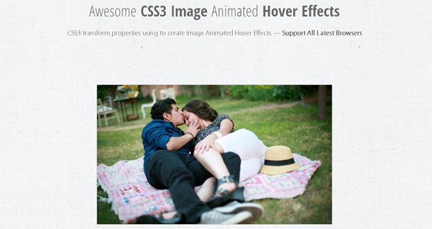 Awesome-CSS3-Image-Animated-Hover-Effects