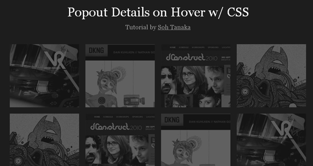 Popout-Details-on-Hover-CSS3